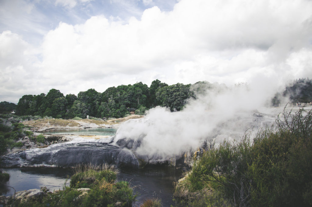 Wondering which places to visit in Rotorua? Our guide will help you to choose the best things to do in Rotorua. Geysers are not everything!