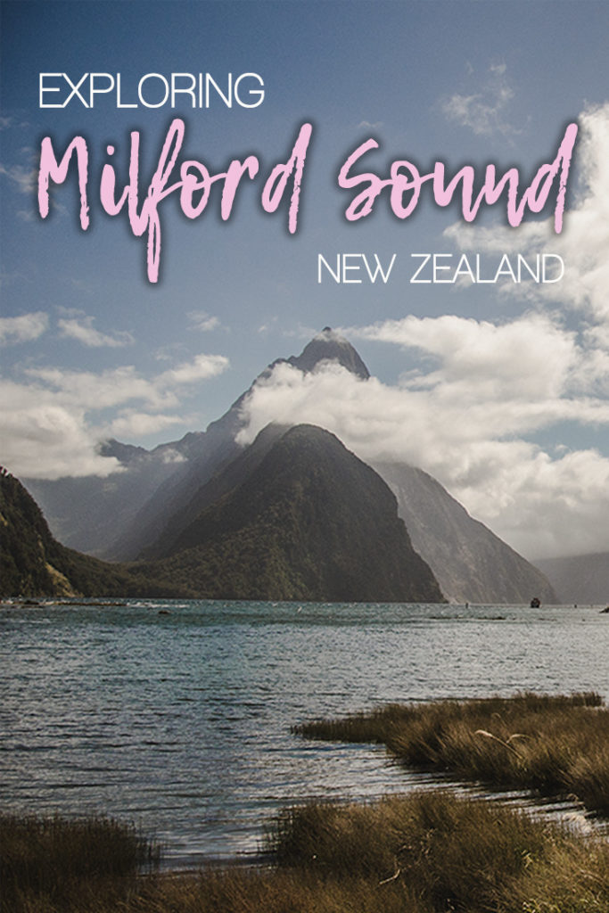 Milford Sound cruise definitely should be on your bucket list. But what else you should do to explore Fiordland better?