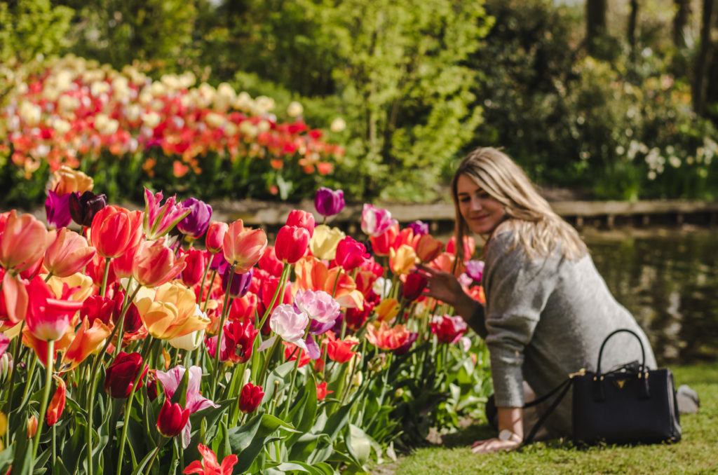 Do you want to see fields of tulips in Holland? Read about the most famous Keukenhof garden and other alternatives in our guide.